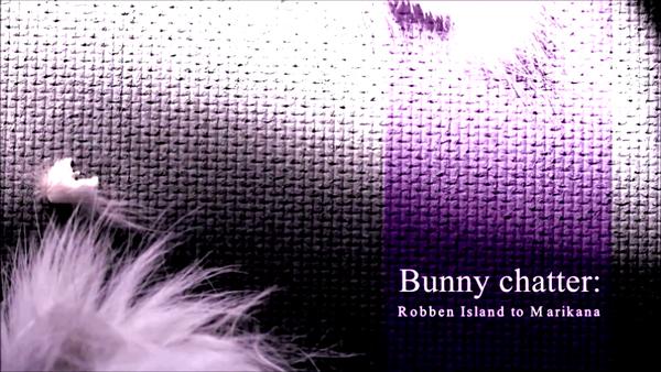 Bunny-chatter-still-1